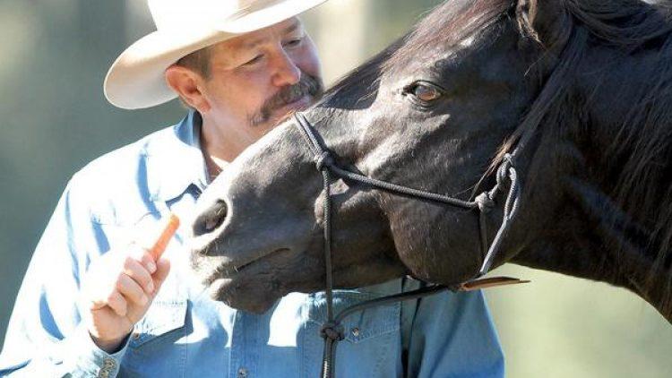 Pat Parelli e il Metodo di Equitazione Naturale