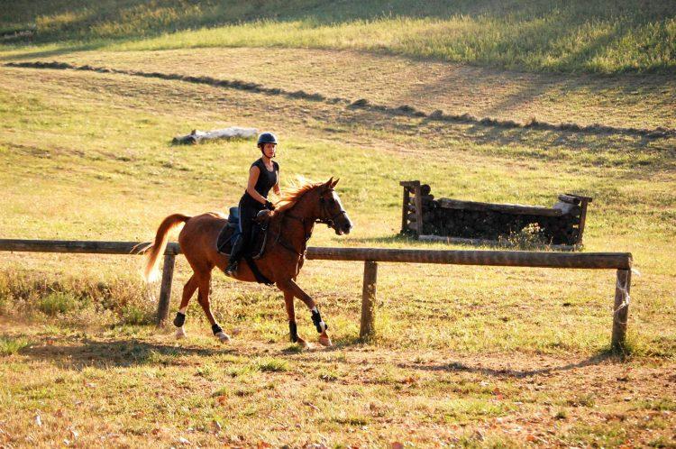 Efficienza funzionale a cavallo con il Metodo Feldenkrais®