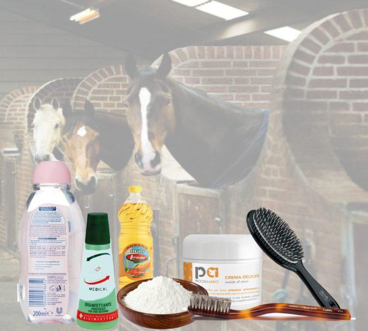 Semplici rimedi casalinghi da usare con i cavalli