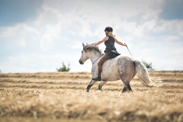 È normale aver paura vicino ai cavalli?