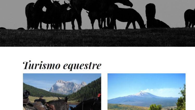 Il turismo equestre a Fieracavalli Verona