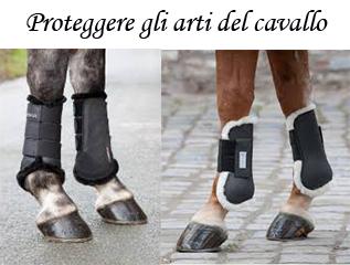 protezioni per gli arti del cavallo
