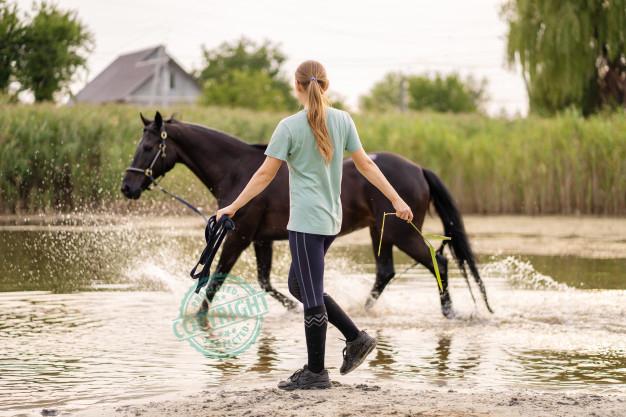 calze da equitazione