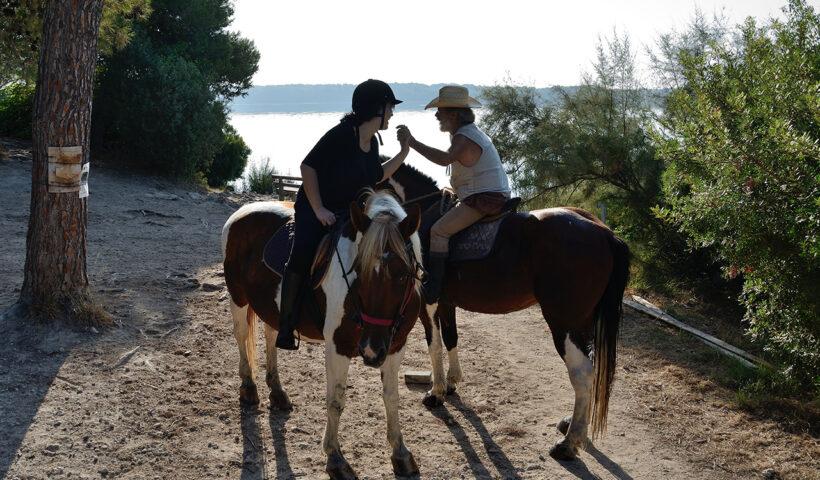 equitazione per adulti
