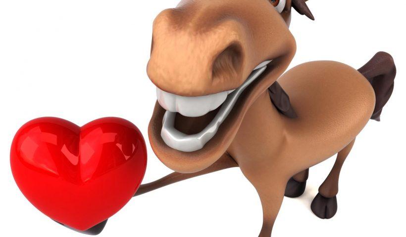 cuore del cavallo